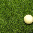 Stock Photo: Grass and tennis ball