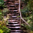 Old Wet Stone Steps — Stock Photo