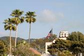 Palm Tree Flag — Stock Photo