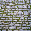 Cobblestone — Stock Photo #1921374