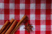 Cinnamon sticks with star-anise — Stock Photo