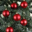 Christmas tree ornament lights — Stock Photo