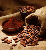 Cacao — Stock Photo