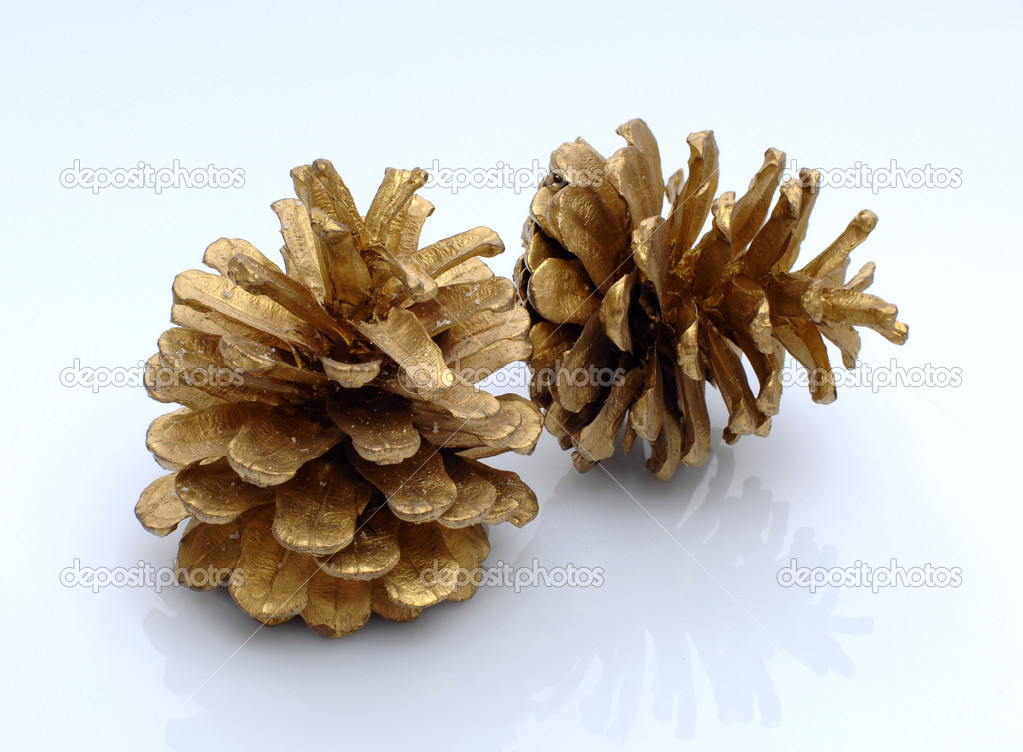 Gold color pine cones — Stock Photo #1302724