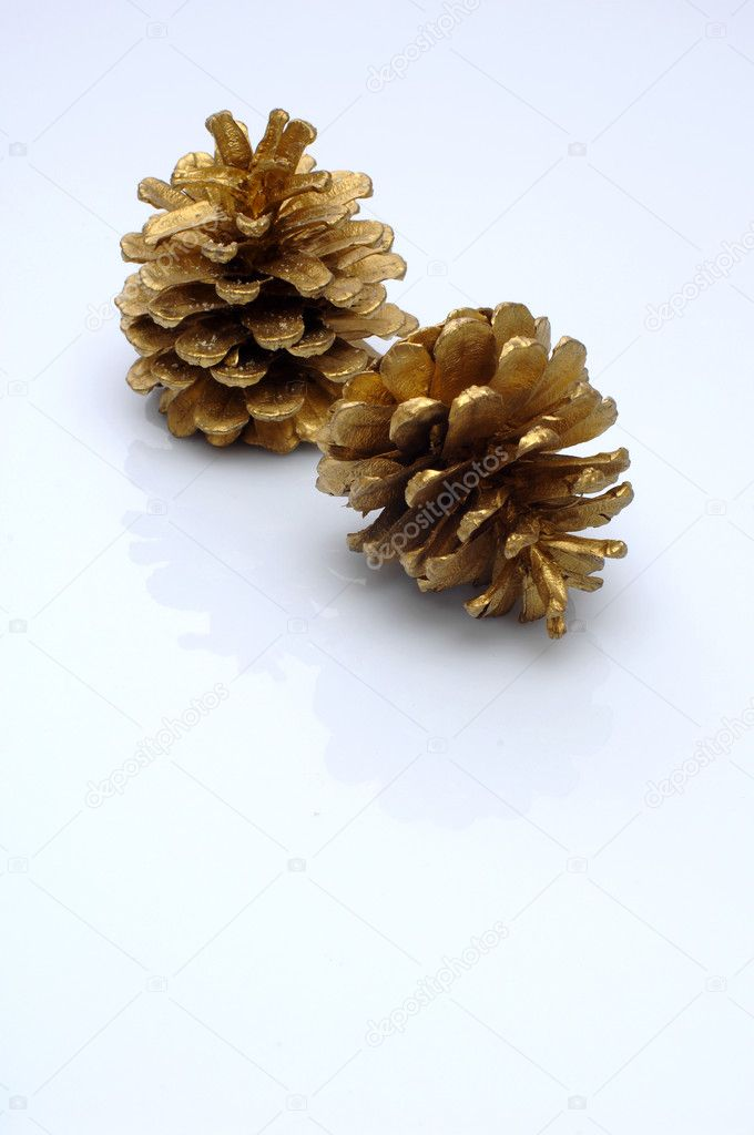 Gold color pine cones — Stock Photo #1302740