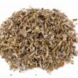 Stock Photo: Sage tea