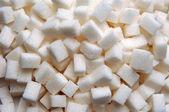 Lumb suiker — Stockfoto