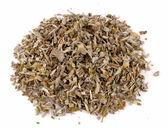 Sage tea — Stock Photo