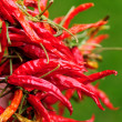 Stock Photo: Red pepper