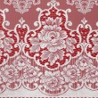 Stock Photo: Lace cloth
