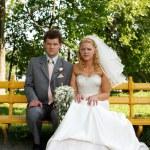 Portrait newlyweds — Stock Photo