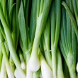 Onions - Stockfoto