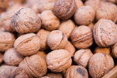 Nueces en cáscara — Foto de Stock