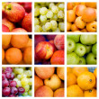 collage van vers fruit — Stockfoto