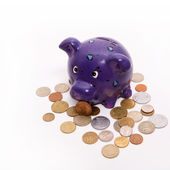 Piggy bank with coins — Stock Photo