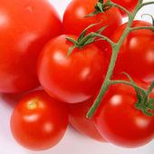 Fresh tomato — Stock Photo