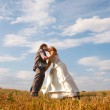 Newlyweds in the field — Stock Photo #2662264
