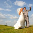 Newlyweds in the field — Stock Photo #2662365