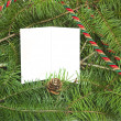Blank card in Christmas tree — Stock Photo