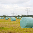 Rolls of hay sitting in the field - Stock Photo