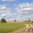 Rural landscape with unsealed road - Stock Photo