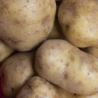 Royalty-Free Stock Photo: Fresh potatoes
