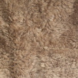 Faux fur close-up - Stock Photo