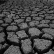 Stock Photo: Mud Flats 2