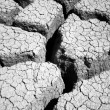 Stock Photo: Mud Flats 1