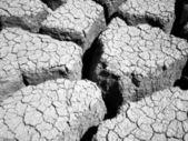Mud Flats 1 — Stock Photo