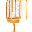 Golden cage — Stock Photo #1302543