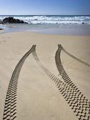 Lastik parça plaj — Stok fotoğraf