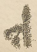 Sand crab balls — Stock Photo