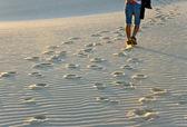 Sand dune — Stock Photo