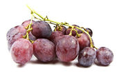Red Globe grapes — 图库照片