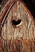 Valentine birdhouse, — Stock Photo