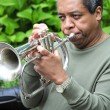 Stock Photo: Jazz Musician