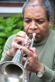 Jazz Musician — Stock Photo