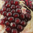 Close-up of pomegranate — Stock Photo #1342703