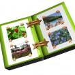 Stock Photo: Summer photoalbum