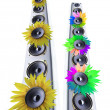 Stock Photo: Sunflower loudspeaker