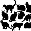 Stock Vector: Shadowy cats
