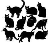 Shadowy cats — Stock Vector