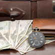 Money lays on old suitcase — Stock Photo #1401076
