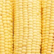 Stock Photo: Freshly harvested corn