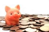 Pequeño cerdo se sienta en las monedas — Foto de Stock