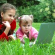Happy sisters with laptop on the meadow - Stock Photo