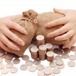 Stock Photo: Female hands protects bags with money