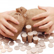 Female hands protects bags with money — Stock Photo