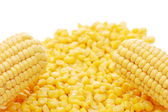Ear of fresh corn and tinned corn — Stock Photo